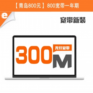 300M单宽带800元/1年